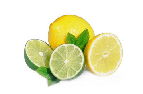 Citron bio PREMIUM HORTUS